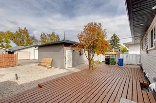 Photo 45: 87 Armstrong Crescent SE in Calgary: Acadia Detached for sale : MLS®# A1152498