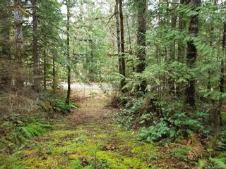 Photo 4: LOT 8 MACMILLAN Dr in : PA Sproat Lake Land for sale (Port Alberni)  : MLS®# 868768