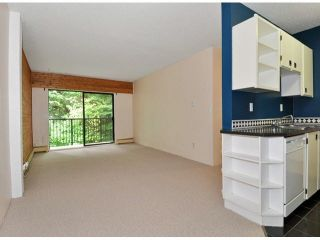 "Photo 9: 204 195 MARY Street in Port Moody: Port Moody Centre Condo for sale in ""VILLA MARQUIE"" : MLS®# V1107994"