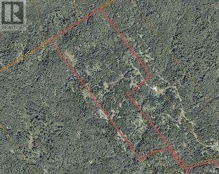Photo 3: - Thorpe Road in Letang: Vacant Land for sale : MLS®# NB057578