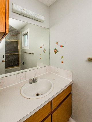 Photo 28: 48 Whitworth Way NE in Calgary: Whitehorn Detached for sale : MLS®# A1147094