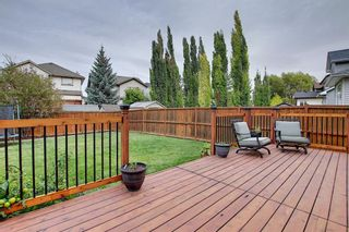 Photo 40: 10 CRANWELL Link SE in Calgary: Cranston Detached for sale : MLS®# A1036167