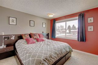 Photo 14: 636 WOLF WILLOW Road in Edmonton: Zone 22 House for sale : MLS®# E4226903