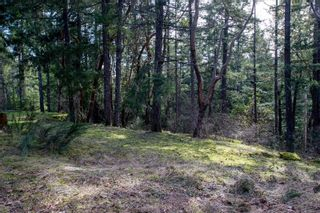 Photo 29: 2391 Damascus Rd in : ML Shawnigan House for sale (Malahat & Area)  : MLS®# 869155