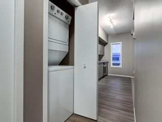 Photo 6: 1611 4641 128 Avenue NE in Calgary: Skyview Ranch Apartment for sale : MLS®# A1029088