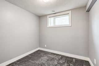 Photo 27: 253 Arbour Grove Close NW in Calgary: Arbour Lake Detached for sale : MLS®# A1128031