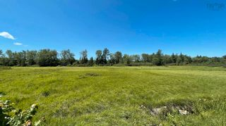 Photo 5: Lot New Albany in New Albany: 400-Annapolis County Vacant Land for sale (Annapolis Valley)  : MLS®# 202120180