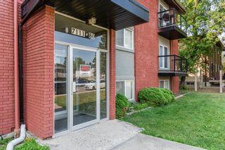 Photo 4: 204 7111 80 Avenue in Edmonton: Zone 17 Condo for sale : MLS®# E4256387