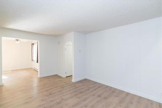 Photo 20: 319 Centrale Avenue in Ste Anne: R06 Residential for sale : MLS®# 202115601