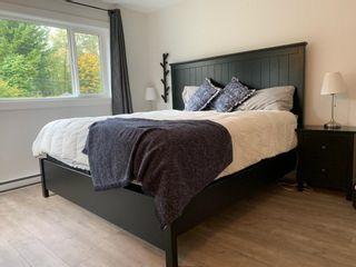 Photo 11: 41552 RAE Road in Squamish: Brackendale 1/2 Duplex for sale : MLS®# R2624467