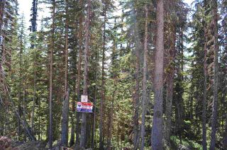 """Photo 14: 210 ALPINE Way in Smithers: Smithers - Rural Land for sale in """"Hudson Bay Mountain Estates"""" (Smithers And Area (Zone 54))  : MLS®# R2453895"""