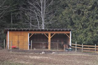 Photo 19: 2858 Phillips Rd in : Sk Phillips North House for sale (Sooke)  : MLS®# 867290