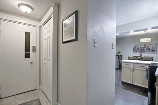 Photo 11: 121 6919 Elbow Drive SW in Calgary: Kelvin Grove Row/Townhouse for sale : MLS®# A1085776