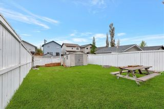 Photo 23: 270 Erin Circle SE in Calgary: Erin Woods Detached for sale : MLS®# C4292742