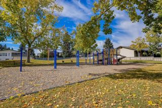 Photo 48: 22 LAKE ROSEN Place SE in Calgary: Lake Bonavista Detached for sale : MLS®# C4208806