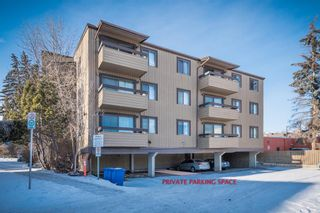 Photo 4: 302 1222 Kensington Close NW in Calgary: Hillhurst Apartment for sale : MLS®# A1056471