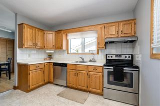 Photo 7: 507 Hazel Dell Avenue in Winnipeg: East Kildonan Residential for sale (3D)  : MLS®# 202009903