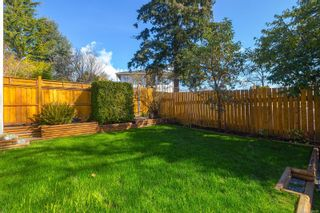 Photo 61: 3253 Doncaster Dr in : SE Cedar Hill House for sale (Saanich East)  : MLS®# 870104