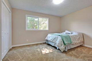 Photo 7: 8536 Atlas Drive SE in Calgary: House for sale : MLS®# C3633111