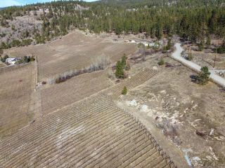 Photo 6: 1415 SMETHURST Road, in Naramata: Agriculture for sale : MLS®# 189824