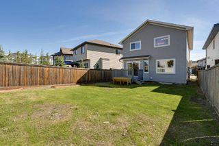 Photo 45: 9266 212 Street in Edmonton: Zone 58 House for sale : MLS®# E4249950