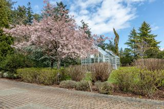 Photo 82: 3275 Campion Rd in : CS Martindale House for sale (Central Saanich)  : MLS®# 866155