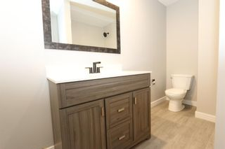 Photo 21: 547 Templeby Place NE in Calgary: Temple Detached for sale : MLS®# A1071164