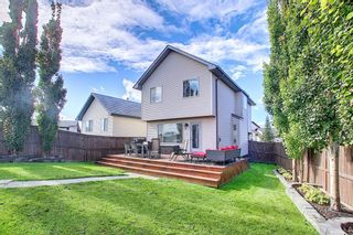 Photo 24: 83 Cranberry Square SE in Calgary: Cranston Detached for sale : MLS®# A1141216