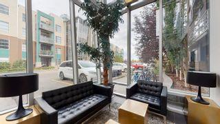 Photo 19: 212 2584 Anderson Way SW in Edmonton: Zone 56 Condo for sale : MLS®# E4262336