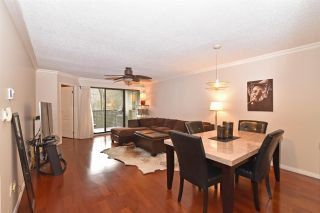 Photo 1: 205 1210 PACIFIC STREET in Coquitlam: North Coquitlam Condo for sale : MLS®# R2235055