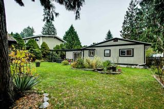 Photo 18: 21161 122 Avenue in Maple Ridge: Northwest Maple Ridge House for sale : MLS®# R2415001
