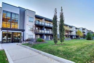 Photo 1: 117 15233 1 Street SE in Calgary: Midnapore Apartment for sale : MLS®# A1040196