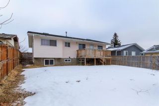 Photo 30: 3807 49 Street NE in Calgary: Whitehorn Detached for sale : MLS®# A1066626