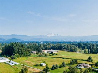 Photo 6: 5571 ROSS ROAD in Abbotsford: Agriculture for sale : MLS®# C8037560