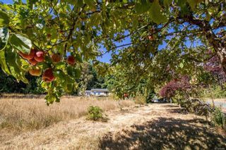 Photo 30: 4205 Armadale Rd in : GI Pender Island House for sale (Gulf Islands)  : MLS®# 885451