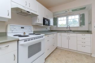 Photo 14: 966 Lovat Ave in : SE Quadra House for sale (Saanich East)  : MLS®# 866966