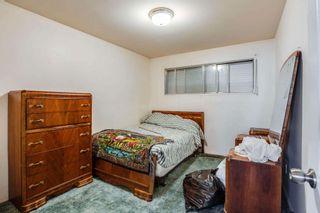 Photo 19:  in Edmonton: Zone 22 House for sale : MLS®# E4254166