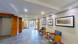 """Photo 6: 116 14885 105 Avenue in Surrey: Guildford Condo for sale in """"REVIVA"""" (North Surrey)  : MLS®# R2574705"""