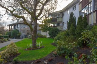 Photo 22: 319 3962 Cedar Hill Rd in : SE Mt Doug Condo for sale (Saanich East)  : MLS®# 865962