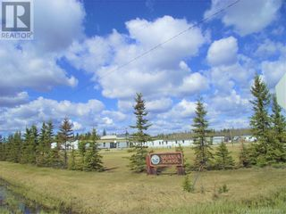 Photo 5: NW-19-81-9-W6 Highway 681 in Rural Saddle Hills County: Agriculture for sale : MLS®# GP205014