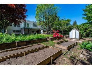 Photo 19: 3076 BABICH Street in Abbotsford: Central Abbotsford House for sale : MLS®# R2367135