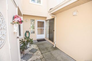 Photo 31: 4 909 Admirals Rd in Esquimalt: Es Esquimalt Row/Townhouse for sale : MLS®# 844251