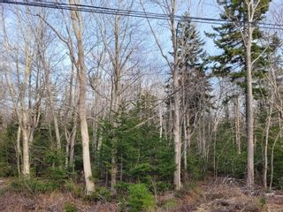Photo 1: Lot Lighthouse Road in Bay View: 401-Digby County Vacant Land for sale (Annapolis Valley)  : MLS®# 202106948