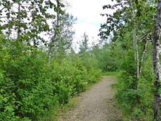 Photo 26: 39 1428 HODGSON Way in Edmonton: Zone 14 House Half Duplex for sale : MLS®# E4249654