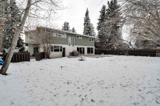 Photo 47: 192 QUESNELL Crescent in Edmonton: Zone 22 House for sale : MLS®# E4230395