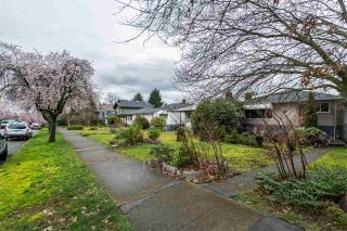 Photo 17: 2653 TRINITY Street in Vancouver: Hastings East House for sale (Vancouver East)  : MLS®# R2044398