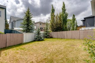 Photo 46: 131 Citadel Crest Green NW in Calgary: Citadel Detached for sale : MLS®# A1124177