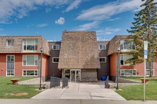 Main Photo: 202 920 68 Avenue SW in Calgary: Kingsland Apartment for sale : MLS®# A1120395