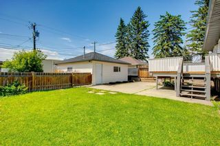 Photo 27: 2017 37 Street SE in Calgary: Forest Lawn Detached for sale : MLS®# A1101949