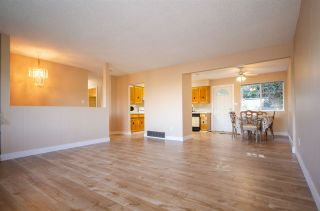 Photo 17: 1941 CHARLES Street in Port Moody: College Park PM 1/2 Duplex for sale : MLS®# R2568079